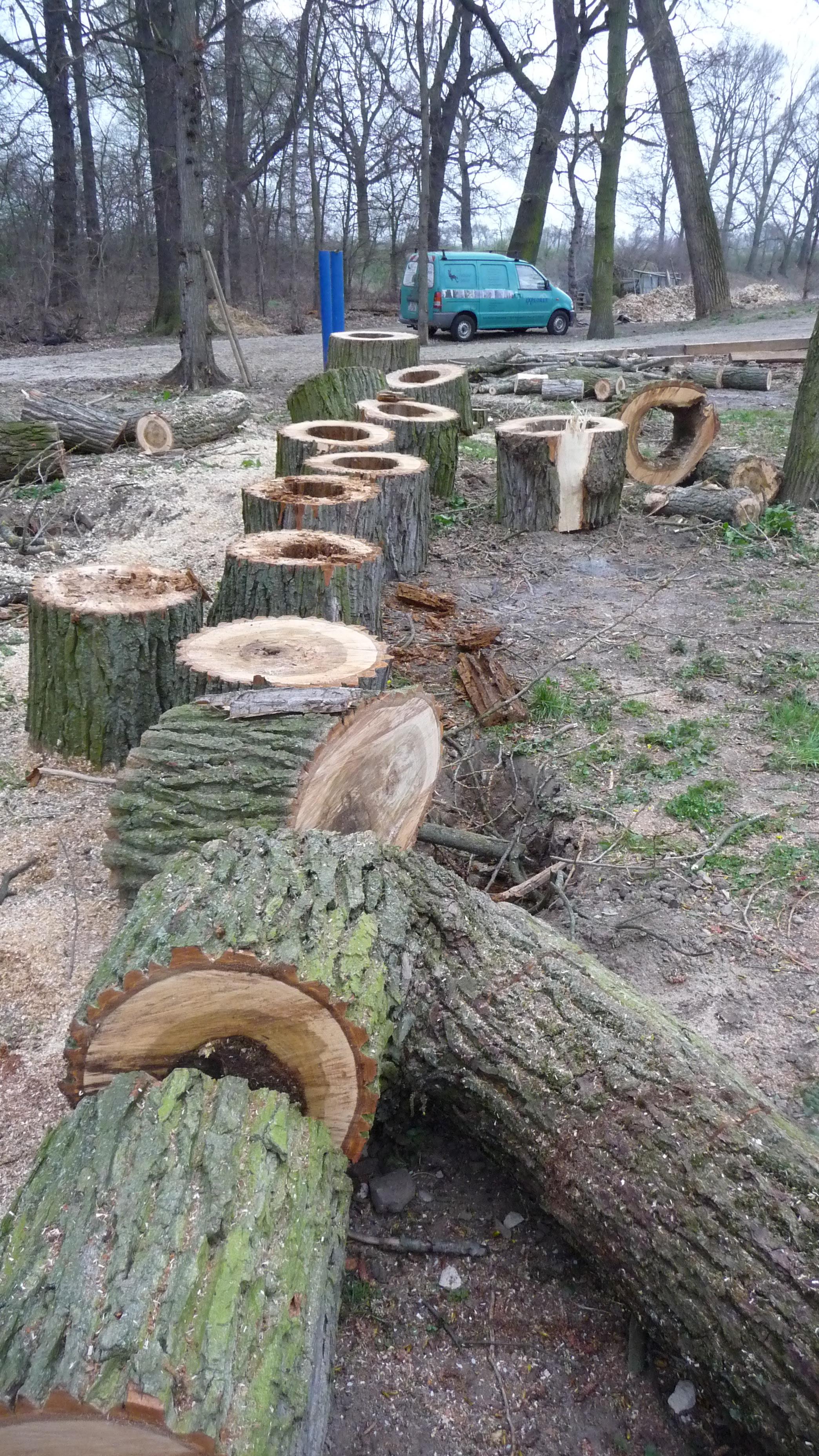 Berühmt Baumdienst RICHTER im Landkreis Elbe-Elster - Baumfällung MG53